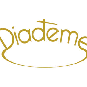 Newsletter Diadème n°3 !